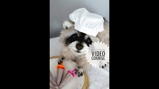 Stuffed Animal Pattern Toy Raccoon Video Tutorial. Doll Making.  Airbrush Teddy Bear. Collection Toy