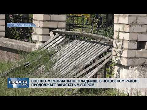 12.07.2019 / Кладбище в Псковском районе продолжает зарастать мусором