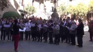 preview picture of video 'Solsona, Caramelles 2015: Orfeó Nova Solsona - Plaça Palau'