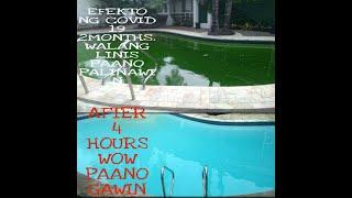 paano palinawin ang swimming pool na kulay green
