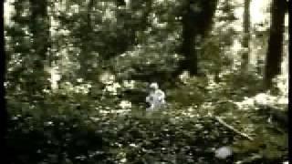 la bête 1975 streaming vf