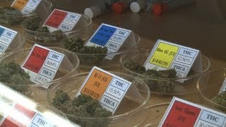 California cracks down on medical marijuana