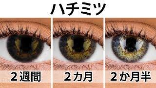 瞳の色を変え、2週間で視力をアップさせる簡単な3つの方法