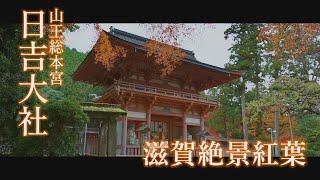 滋賀絶景紅葉2019 「日吉大社」