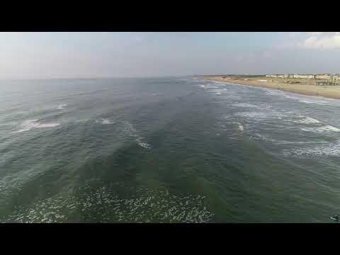 Kustlijn & golfsurfers