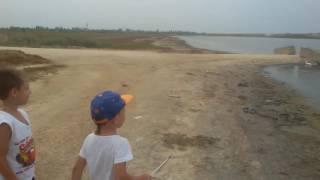 Где ловят креветок на азовском море
