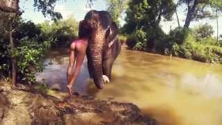 Beautiful Videos of Sri Lanka