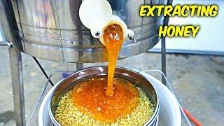 ExtractingHoney-HoneyHarvestPart2