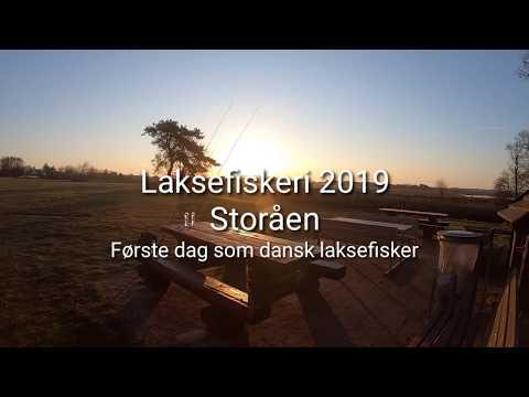 Laks på 94 cm. fra Storåen 2019