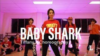 Baby Shark  Dede Sabunge Remix Clickmore  Tiffany.X Choreography