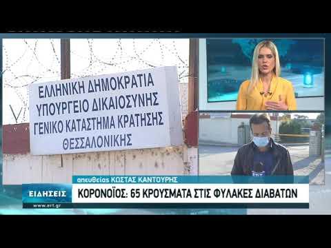 65 κρούσματα στις φυλακές Διαβατών   09/11/2020   ΕΡΤ
