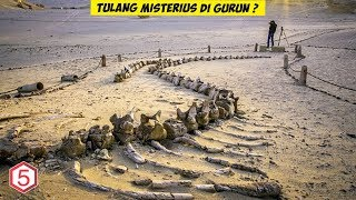 Video Penemuan Tulang Misterius di Hamparan Gurun Sahara MP3, 3GP, MP4, WEBM, AVI, FLV Agustus 2019
