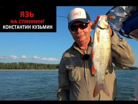 Язь на спиннинг. Рыбалка в Новосибирске на реке Обь. Константин Кузьмин
