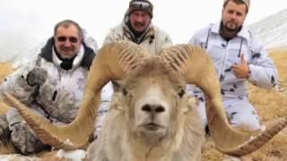 Hume Argali Hunt in Kyrgyzstan