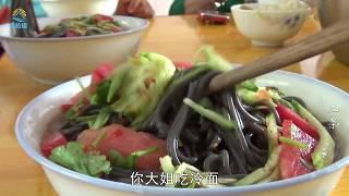 【原创】(472)炎炎夏日吃点啥?东北一家菜园摘菜做了一盆 开胃凉爽真馋人!
