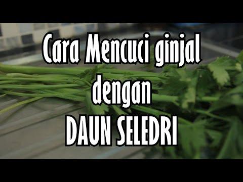 Video MENCUCI GINJAL dengan DAUN SELEDRI - Best Herbs for Kidney Cleansing