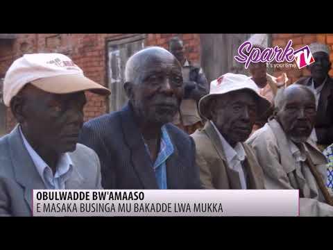 Obulwadde bw'amaaso bweyongedde mu bakadde e Masaka lwa mukka