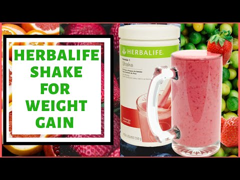 mp4 Herbalife Formula 1 Nutritional Shake Mix For Weight Gain, download Herbalife Formula 1 Nutritional Shake Mix For Weight Gain video klip Herbalife Formula 1 Nutritional Shake Mix For Weight Gain