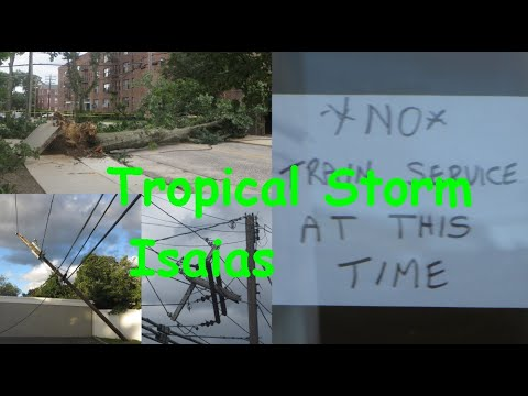 The Aftermath of Tropical Storm Isaias in Mineola and Hicksville