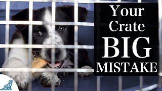 The BIGGEST Mistake People Make With Crate Training A Puppy