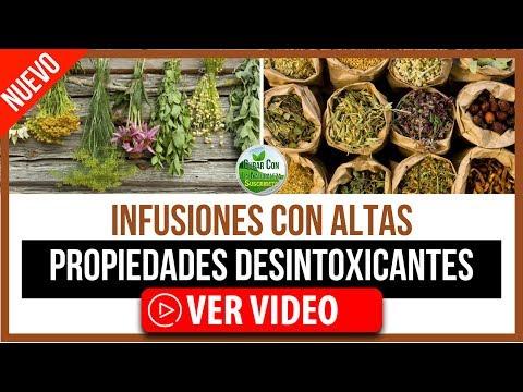 INFUSIONES DE HIERBAS CON ALTAS PROPIEDADES DESINTOXICANTES