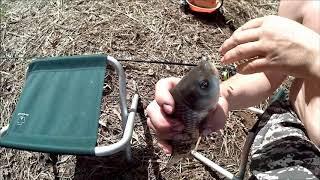 Клев рыбы в назарово красноярский край