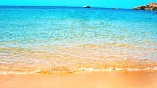 Обзор пляжа / ЕГИПЕТ /Ghazala Beach Resort 4* / Шарм Эль Шейх /