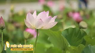 Phút Cầu Nguyện, Thứ Tư 27032019: Kinh Xin Ơn Chết Lành