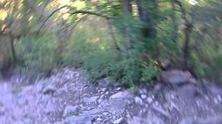 preview picture of video 'Bajada del via crucis Sta. Rosa de Calamuchita'