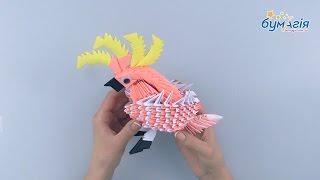 """Набор для творчества ЗD оригами """"Какаду"""" 566 модулей от компании Интернет-магазин """"Радуга"""" - школьные рюкзаки, канцтовары, творчество - видео"""