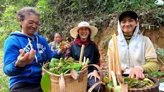 Cô Hạnh nấu mì rau Bép giữa núi rừng cao nguyên - Hương vị đồng quê - Bến Tre - Miền Tây