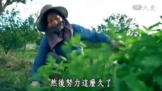 【農夫與他的田】20190329 - 農業裡的女性力量