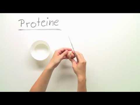 Der Auftreffpunkt der Prostata