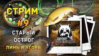 Русская Рыбалка 4 Стрим #9 - Старый Острог. Линь и Угорь
