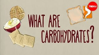 How Do Carbohydrates Impact Your Health? - Richard J. Wood