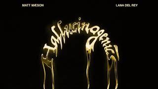Musik-Video-Miniaturansicht zu Hallucinogenics Songtext von Matt Maeson ft. Lana Del Rey