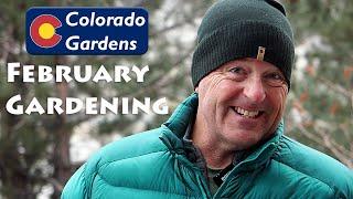February Colorado Gardening