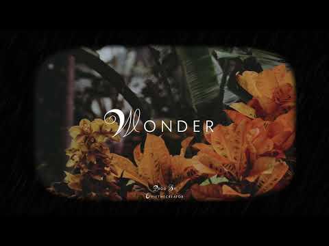 ''WONDER'' Burna Boy x Wizkid x Mr Eazi x Runtown Type Beat | Afrobeat Instrumental 2019