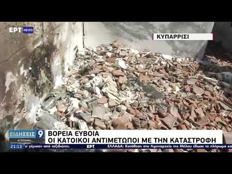 Β. Εύβοια: Οι κάτοικοι αντιμέτωποι με την καταστροφή ΕΡΤ 13/08/2021