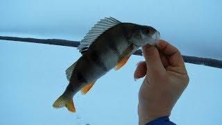 Рыбалка в карелии на урозеро карелия