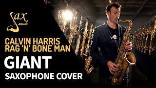 Calvin Harris, Rag'n'Bone Man   Giant   Saxophone Cover