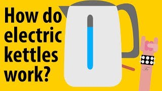 How do electric kettles work? - Kitchen Appliance Explained