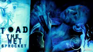 Toad The Wet Sprocket - Desire, 1997 Coil
