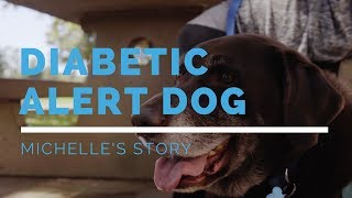 Diabetic Alert Dog: Michelle's Story