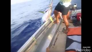 Atiu Fishing
