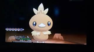 LIVE Shiny Cubone after 704 SRs! Pokemon X!