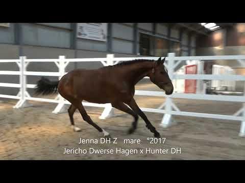 Jenna DH Z