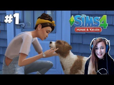 Es geht endlich los! - Let's Play Die Sims 4 Hunde & Katzen #1 | simfinity