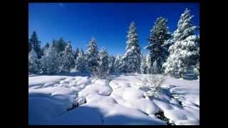 Széllyes Sándor: Székely Karácsony