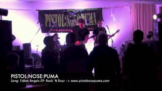 preview picture of video 'PISTOL NOSE PUMA Fallen Angels Live in Rehau 2012'